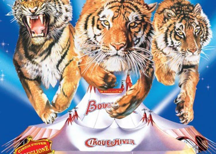 Cirque Bouglione à Grenoble