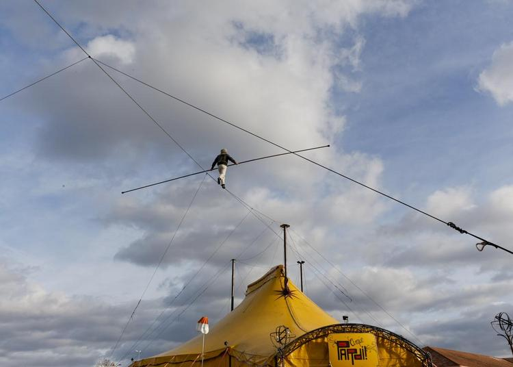 Cirque Pardi! à Dolus d'Oleron