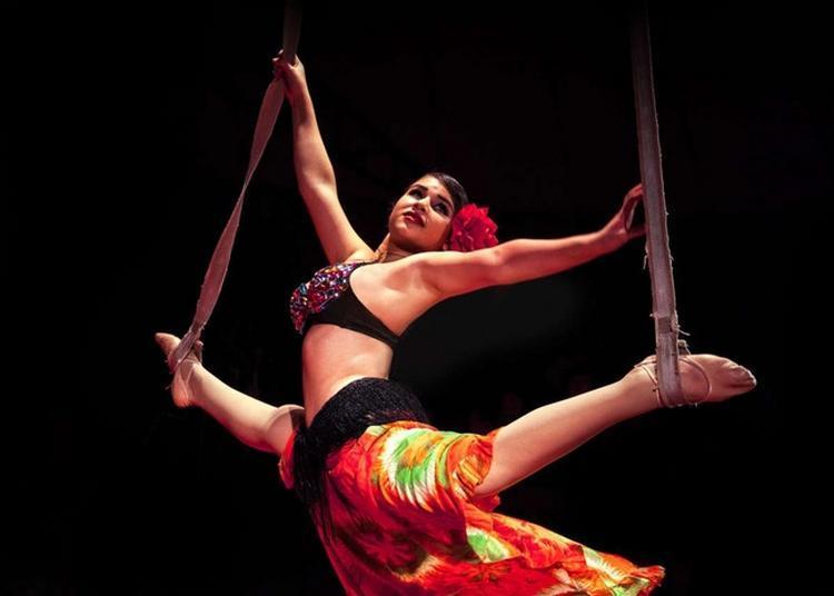 Cirque Romanès à Paris 12ème