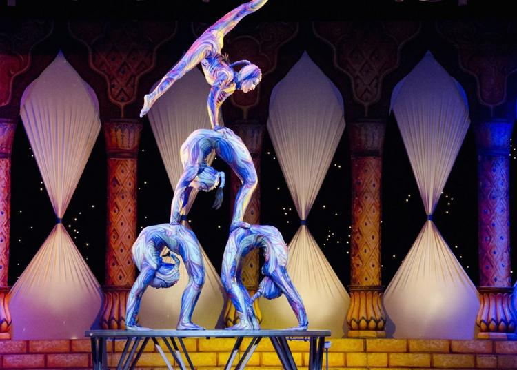 Cirque Russe Sur Glace à Le Blanc Mesnil