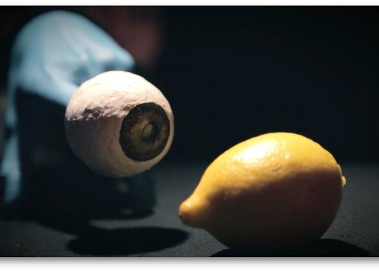 Citron / Le Bruit des Casseroles / LES EXTRAS à Ramonville saint Agne