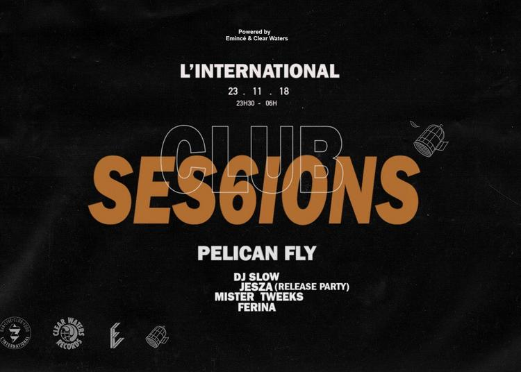 Clubsessions06 : Pelican Fly Night à Paris 11ème