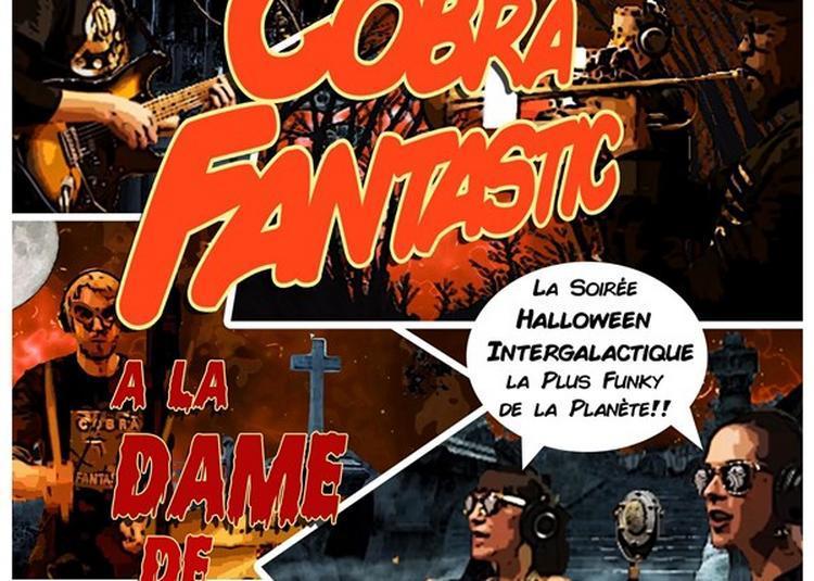 Cobra Fantastic à Paris 13ème