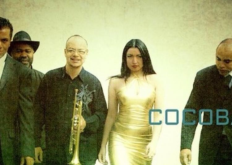 Cocobamboo à Paris 6ème