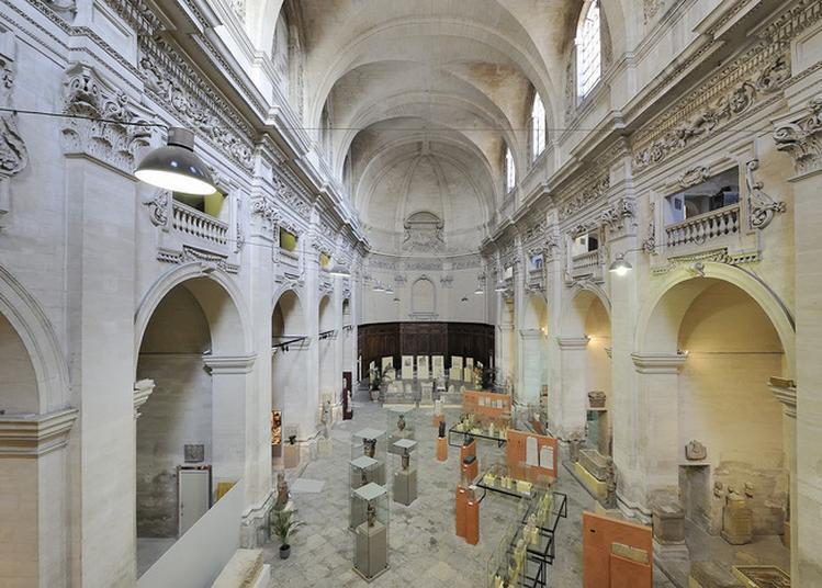 Collections Archéologiques Du Musée Calvet Au Musée Lapidaire à Avignon