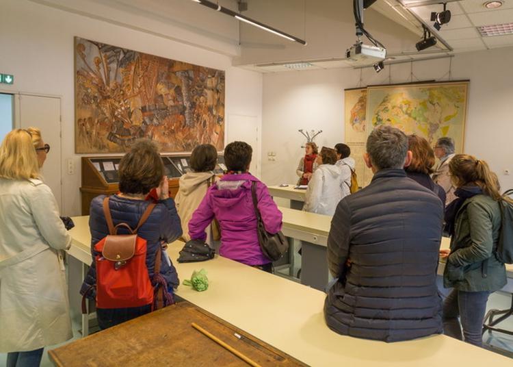 Collections Scientifiques Et Artistiques De L'université De Rennes 1