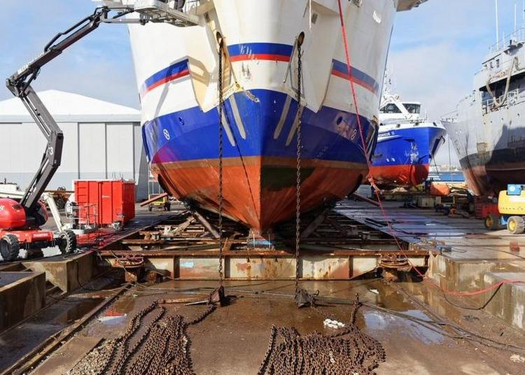 Concarneau : Un Port Au Travail