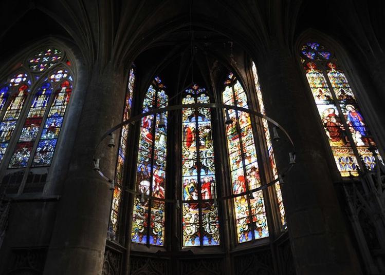 Concert à Deux Violoncellistes à Metz