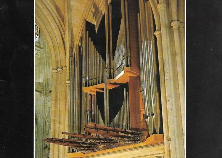 Concert à La Cathédrale Saint-etienne D'auxerre à Auxerre