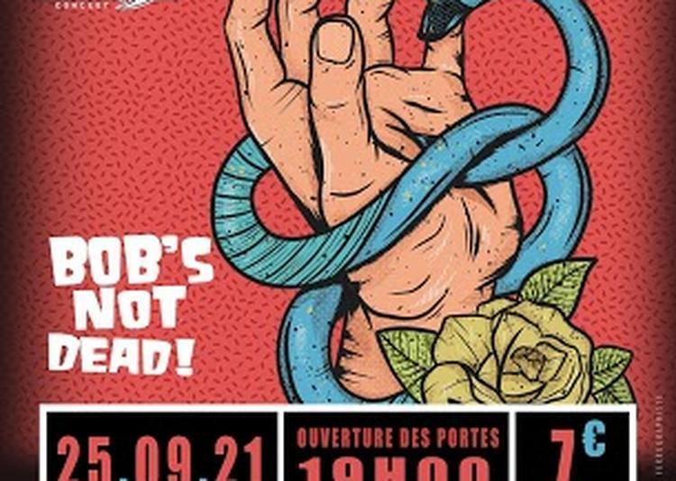 Concert : Bob's NoT Dead! à Niort