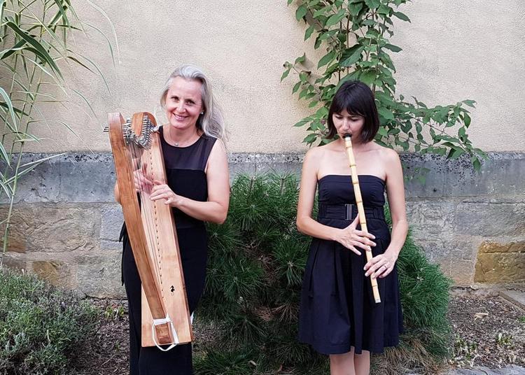 Concert chant/harpe/ney (flûte turque) à Le Mans