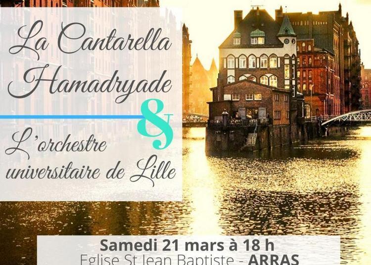 Concert classique: Magnificat de Félix Mendelssohn à Arras