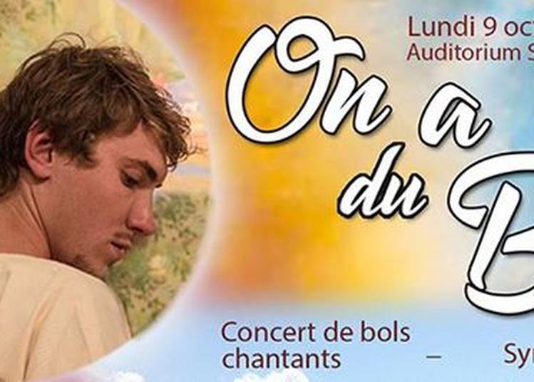 Concert de bols chantants - Symphonie vibratoire à Toulouse