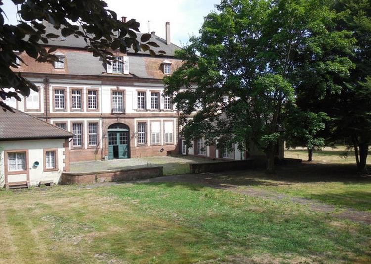 De L'école Municipale Des Arts à Wissembourg
