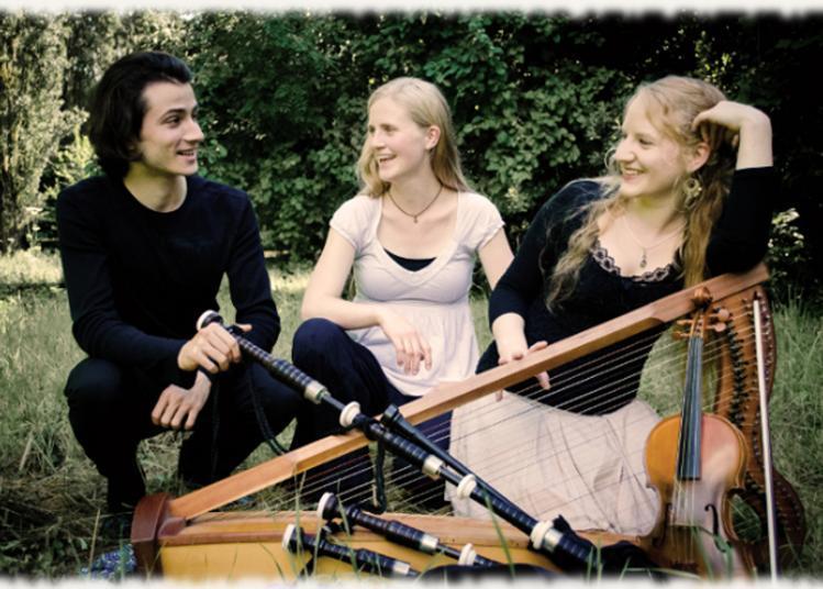 Concert De L'ensemble Arzian à Nouaille Maupertuis