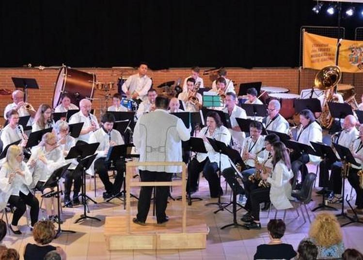 Concert De L'orchestre D'harmonie Du Frontonnais à Villemur sur Tarn