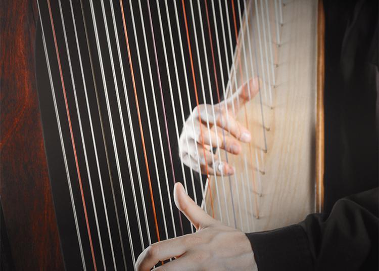 Concert De L'orchestre De Chambre De Lyon à Macon