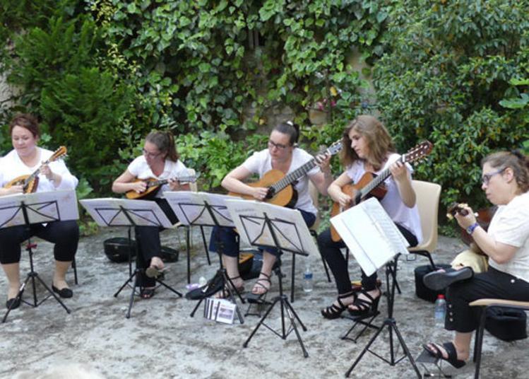 Concert De Mandolines à Vienne
