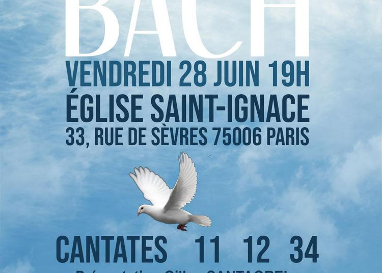 Concert de Pentecôte - Trois Cantates de J.-S. Bach - avec Gilles Cantagrel à Paris 6ème