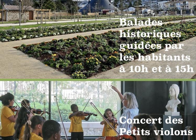 Concert Des Petits Violons Des Calanques Musique Du Monde à Marseille