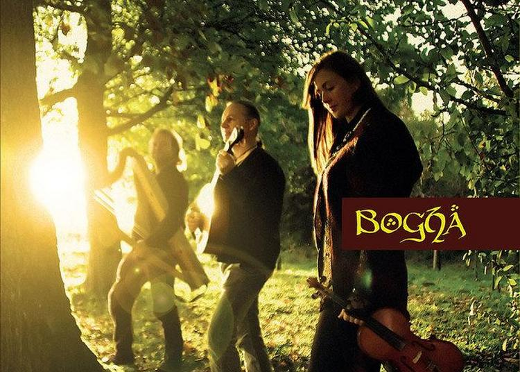 Concert Du Groupe Bogha - Musiques Traditionnelles Celtiques à Dry