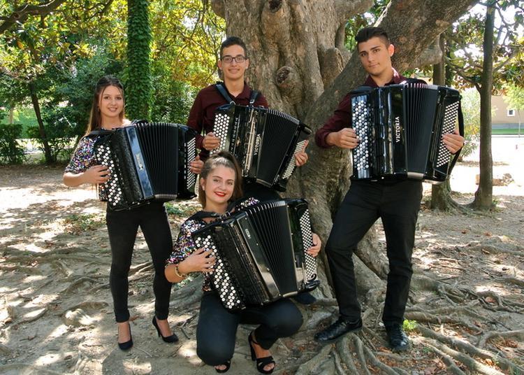 Concert Du Quatuor D'accordéons Du Conservatoire De Musique Du Pays D'arles à Arles