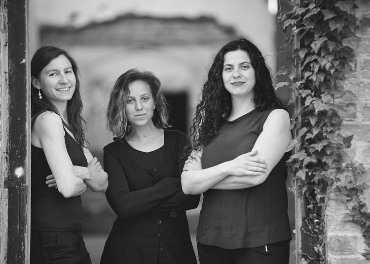 Concert Ensemble Vertebrae à Strasbourg