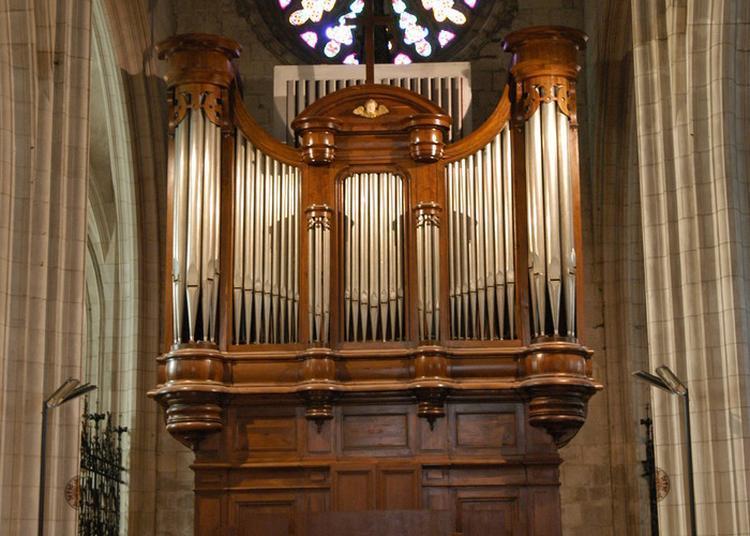 Concert Et Découverte De L'orgue à Niort