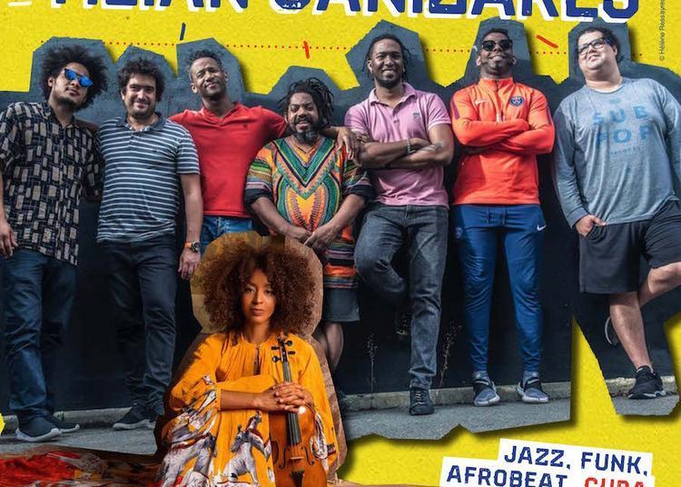 Concert  Jazz, Funk, Afrobeat - Cuba à Biarritz
