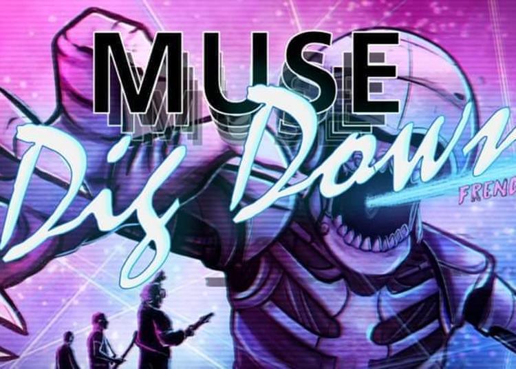Concert Muse par DIG DOWN à Aulnoy Lez Valenciennes