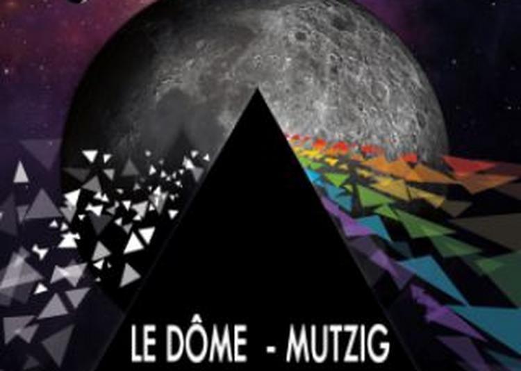 Concert Tribute To Pink Floyd - Think Lloyd à Mutzig