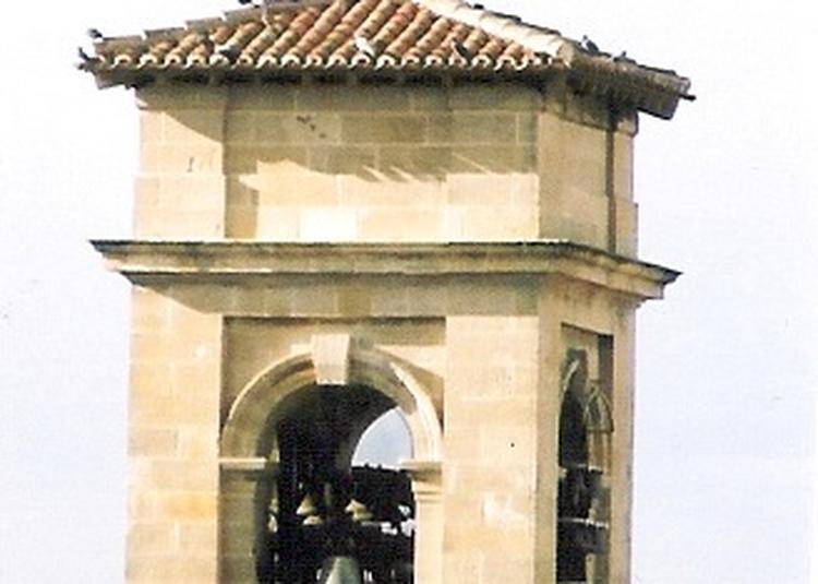 Concert - visite à Castres