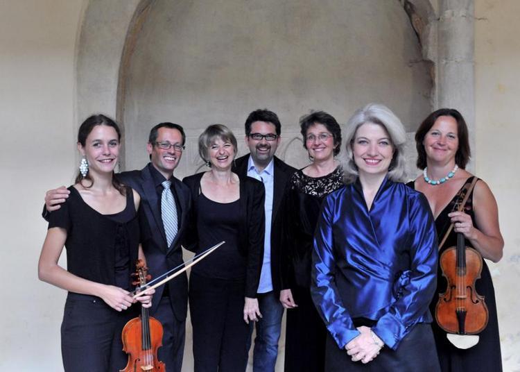Le Violon Au Xviie Siecle En Italie à Avignon