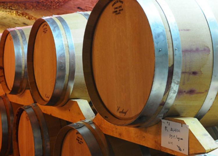 Conférence Dégustation Histoire De La Vigne En Roussillon à Rivesaltes