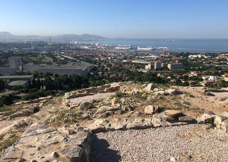 Conférence En Ligne : Le Verduron, Un Établissement Gaulois Aux Portes De Marseille Grecque