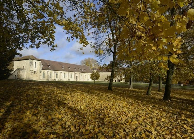 Conférence « L'archéologie à Maubuisson : Hier, Aujourd'hui Et Demain » à Saint Ouen l'Aumone