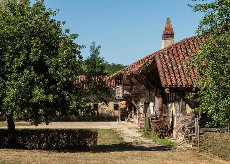 Contes à La Ferme De La Forêt à Courtes