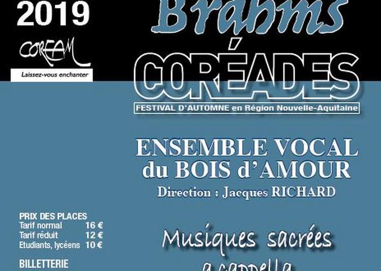 Coréades : Ensemble Vocal Le Bois d' Amour à Fontaine le Comte