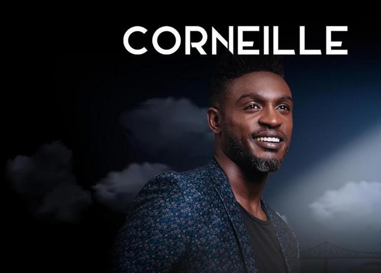Corneille à Andresy