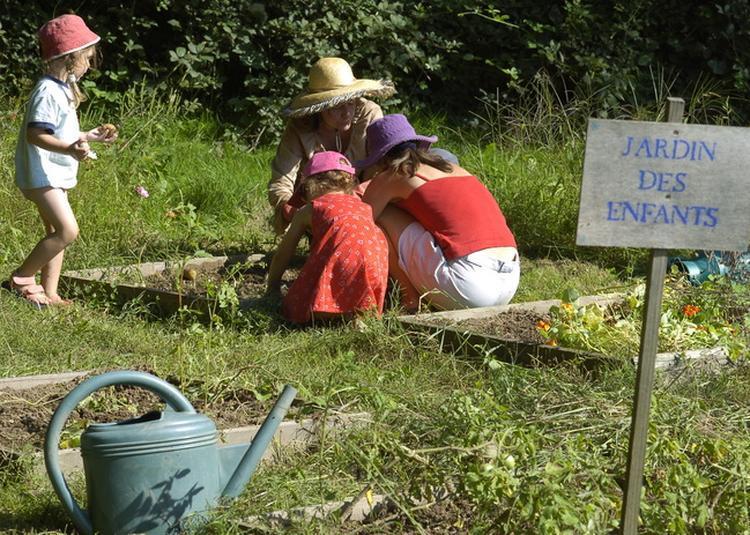 Côté Jardins : Le Potager écologique, Collectif Et éducatif De L'agglomération Lyonnaise à Tassin la Demi Lune