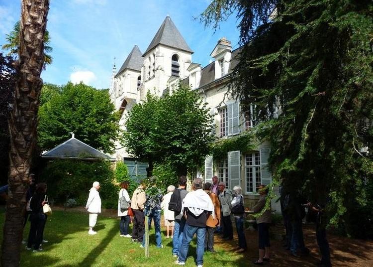 Cours Et Jardins Du Quartier Saint-mexme à Chinon