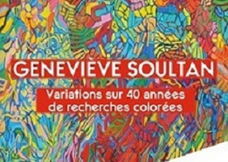 Exposition rétrospective d'oeuvres de geneviève soultan à Meudon la Foret