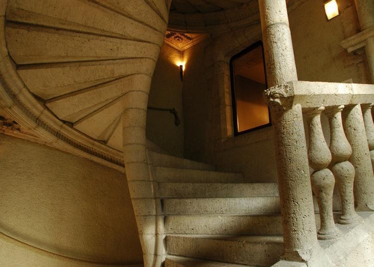 D'art Et D'architecture : Le Musée Des Beaux-arts D'agen ! à Agen