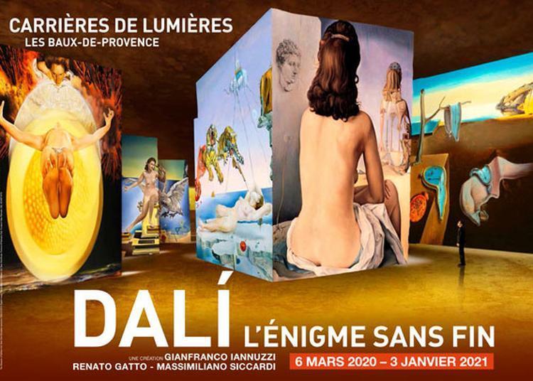 Dali, l'égnime sans fin à Les Baux de Provence