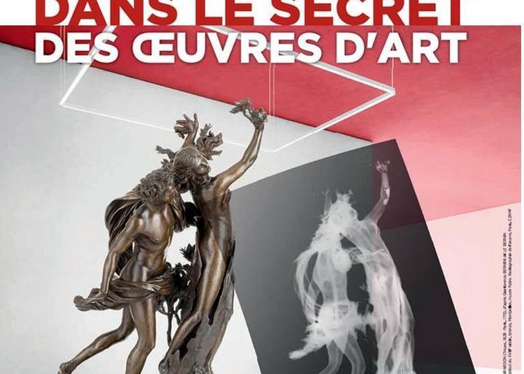 Dans Le Secret Des Oeuvres D'art à Montpellier