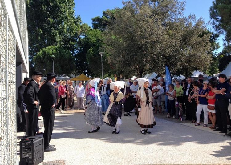 Danse Folklorique Des Déjhouqués à Le Grand Village Plage