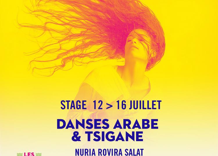 Danses Arabe & Tsigane à Arles