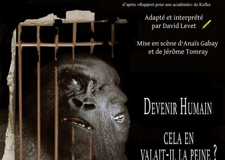 Darwin Factory à Avignon
