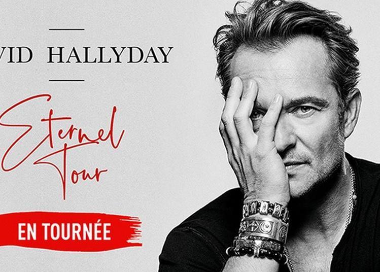 David Hallyday à Tours