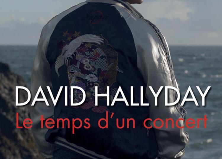 David Hallyday En Concert à Sains en Gohelle